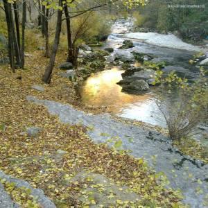 autunno e foliage lungo il burano. località le caldare. autunno 2012.