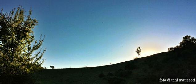 località scavi archeologici pontericcioli. tramonto.