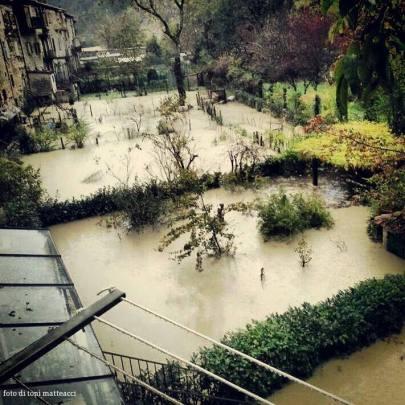 alluvione.novembre 2013. orti lungo via fiorucci.