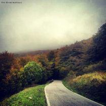 autunno nei pressi dell'infilatoio. monte catria. 2013.