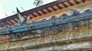 piazza luceoli. particolare con piccioni. settembre 2014.